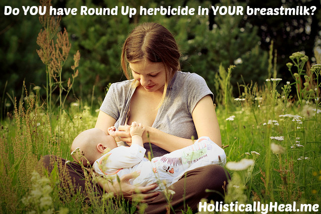 Study reveals American mothers' breast milk is contaminated with Round Up herbicide...now what?