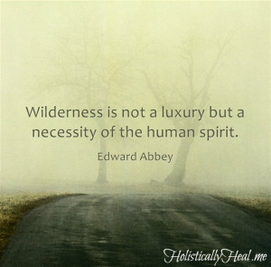 Wilderness-is-not-a
